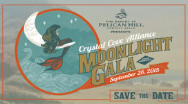 Gala-Save-the-Date-Image-2015