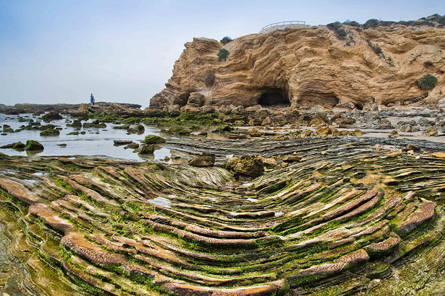 Photo Galleries Crystal Cove Conservancy