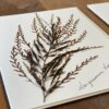 A closeup of a sample Seaweed notecard